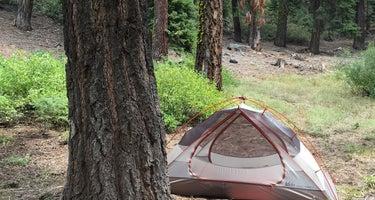 The Needles Lookout Trail Primitive Campsites