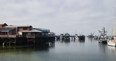 Salinas / Monterey KOA