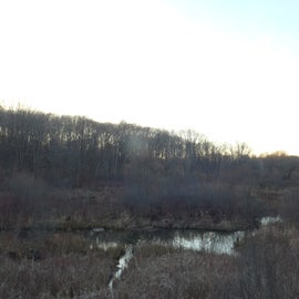 View of sunset from the wildlife viewing deck/sunset overlook