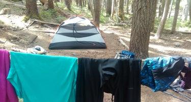 Fire Creek Camp