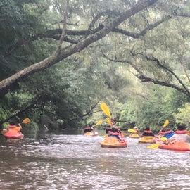 Kayaking down the Oakatoma
