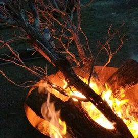 Some firewood we drug to camp
