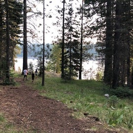 Trail to the lake