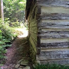 Avent cabin