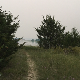 TRail to one of many beaches behind site H-Cedar