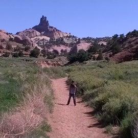 Trail to castle rock