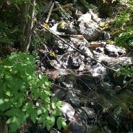 Creek near the campsites