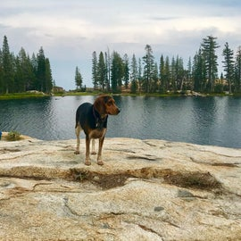 Jackass Lake - just a short drive and 8 mile round trip hike away!