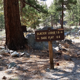 The path to Big Pine Creek Trailhead. you can also walk or drive the road but parking is limited at the trailhead.