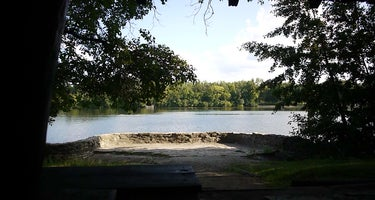 McKinley Woods:  Frederick's Grove