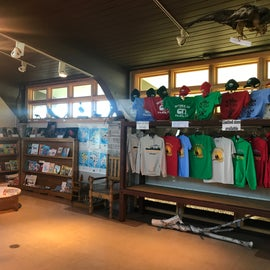 Lovely resource center at the info office, firewood and ice for sale, maps, camping novelties and tshirts.