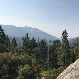Hiking Sequoia