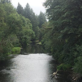 Alsea River from a bridge. A boat launch is below to the right and the campground is on the right a bit farther down. Water height is variable with some deeper and some shallow, rocky areas. Crawfish abound in the river.