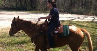 Whetstone Horse Camp