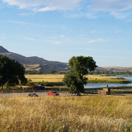 Pelican Point FAS, campsites are under the two large cottonwoods.