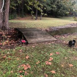 Bridges throwing the park were in good repair (slippery)
