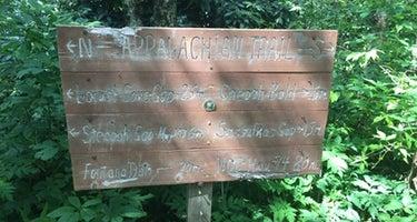 Bartram Trail Backcountry