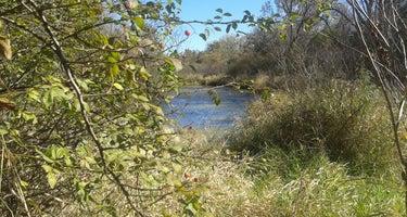 Whitetail Wildlife Management Area