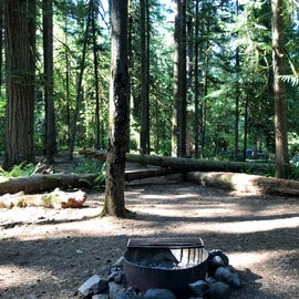 Fire pit and sites at Indian Henry campground