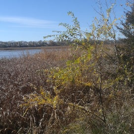 Close to lakes and wetland