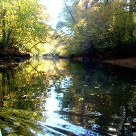 beautiful views along the creek