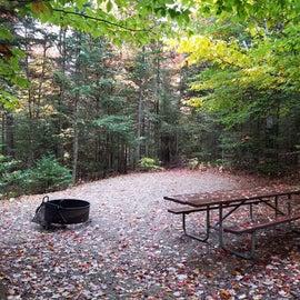 Site 20, tent site, , Sugarloaf 1