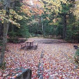 site 21, tent site, Sugarloaf 1
