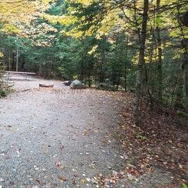 Site 25, Sugarloaf 1 tent site