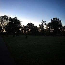 Sunrise at Langwood