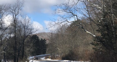 Allegany State Park - Red House Area