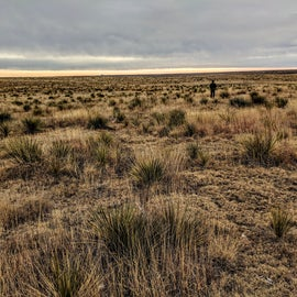 You could get lost among the grasslands watching birds and other wildlife.