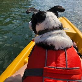 Bossco loves to kayak
