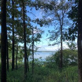Lakeside Trail View