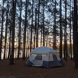 campsite 51 in area 2