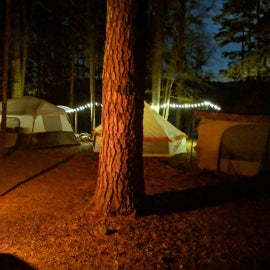 Camp site 47