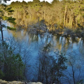 This is the view from the 90-foot cliffs overlooking the Neuse River.