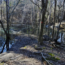During flood season, some of the trails are under the high waters from the Neuse River.