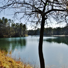 One of the trails takes you to another view of the lake ... and great fishing spots.