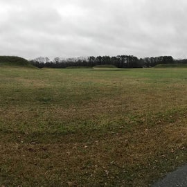 Moundville is the 2nd largest mound complex in North America