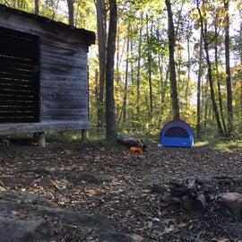 Fire ring beside the shelter