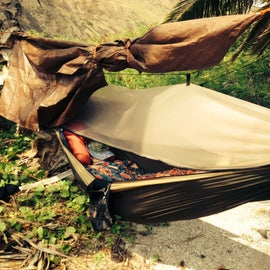 Most of us hammock camped in between two palm trees.