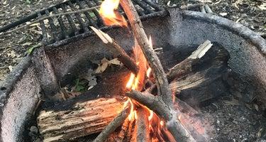 Horsepen Branch Hiker-Biker Overnight (HBO) Campsite