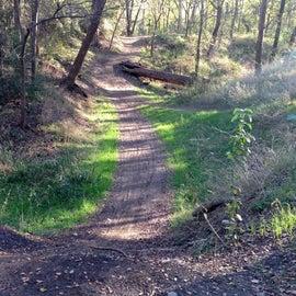 Biking/Hiking path