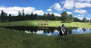 Broken Arrow Horse and RV Campground