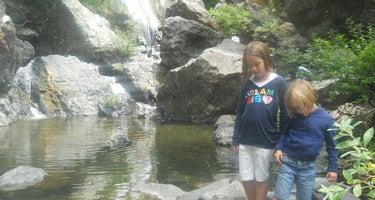 Spruce Campground