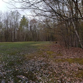 There are several walk-in tent sites located around the perimeter of this field. May 2019 has been a very wet spring; the central area if quite wet, but the tent site themselves are elevated and dry. There's a parking lot at the entrance to this area.