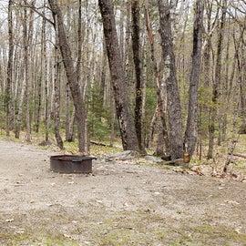 Blackberry Crossing Walk-in site 21