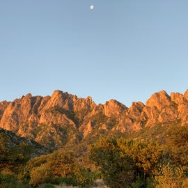 Back side of organ Mountains