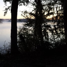 Morning mist over the water.