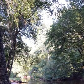 Meandering creek.